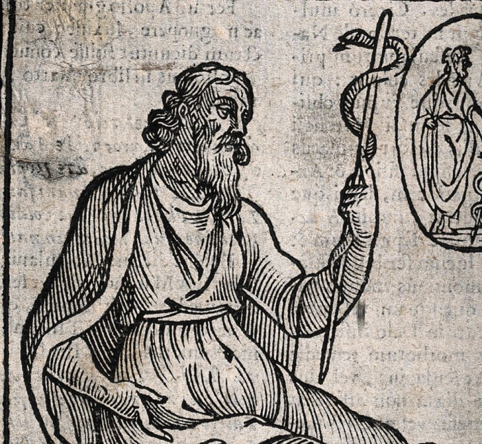 Asclepius_rode